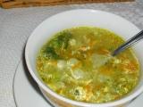 Zeleninová polievka /Zeleninová polévka 2