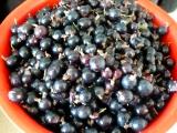 Drobné ovocie vo vlastnej šťave
