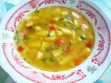 Farebná polievka