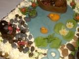 Narodeninová torta /Narozeninový dort