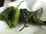 Wrap s pečenými papričkami pimientos de padron