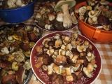 Nakladané huby s korením /Houby s kořením