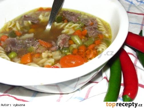 Hustá pikantna mäsová polievka