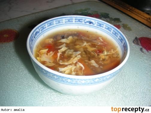Ostrokyslá polievka