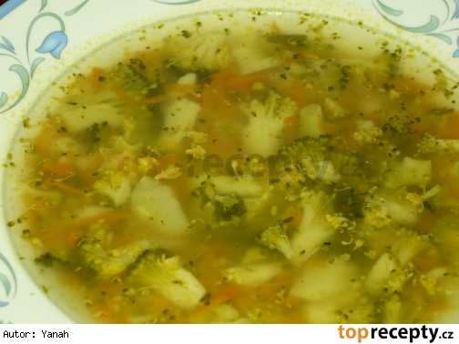 Rýchla zeleninová polievka