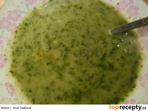 Špenátová polievka /Špenátová polévka