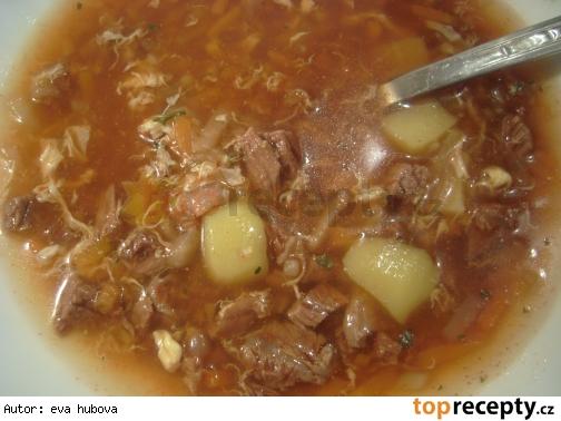 Zeleninová polévka s hovězím masem