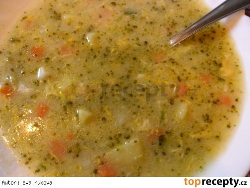 Zeleninová polievka /Zeleninová polévka